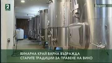 Винарна край Варна възражда старите традиции за правене на вино