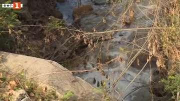 Русенската екоинспекция проверява за непречистени отпадни води в Дунав