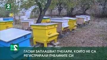 Глоби заплашват стопани, които не са регистрирали пчелните си семейства