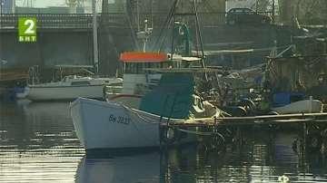 Калканът е забранен за улов до 30 юни