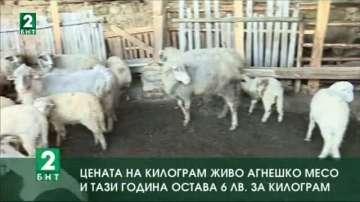 Цената на килограм живо агнешко месо и тази година остава 6 лева
