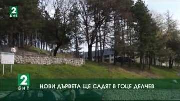 Стотици нови дървета ще засадят в Гоце Делчев