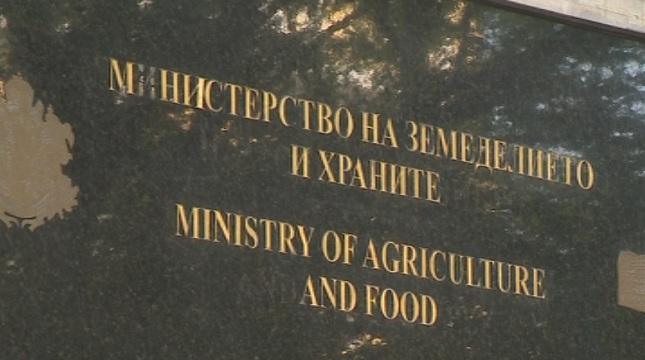 МЗХГ: Няма наводнени земеделски земи в Бургаско