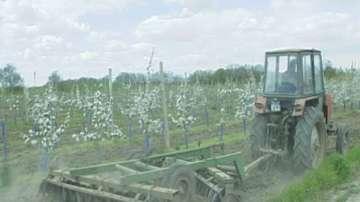 Зърнопроизводители заплашват с протест