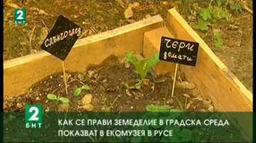 Как се прави земеделие в градска среда показват в Екомузея в Русе