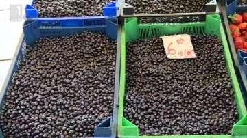 По-ниска цена на боровинките в Благоевград