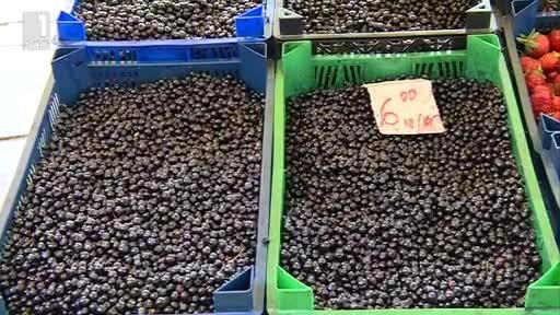 На по-ниска цена от миналата година се продават боровинките в