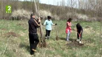 Залесяват по-малко площи в Разград