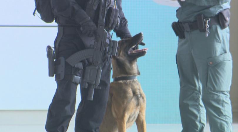 снимка 1 Строги мерки за сигурност на летищата в София, Варна и Бургас