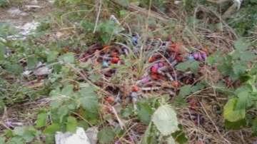 Десетки епруветки с кръв бяха открити до магистрала Хемус край Девня