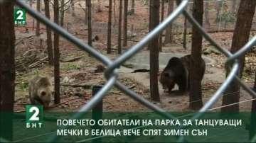 Повечето обитатели на Парка за танцуващи мечки в Белица вече спят зимен сън