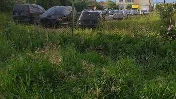 Коли, покрити с черен найлон, притесняват жителите на столичния квартал Обеля