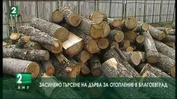 Засилено търсене на дърва и въглища за отопление в Благоевград
