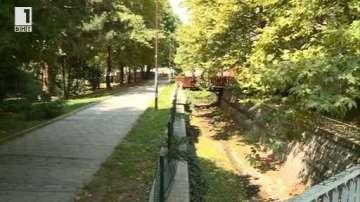След множество сигнали от жители: Пръскат срещу бълхи в Благоевград