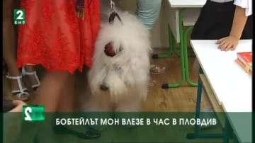 Бобтейлът Мон влезе в час в Пловдив