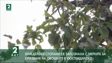 Земеделски стопани се запознаха с мерките за опазване на овошките в Кюстендилско
