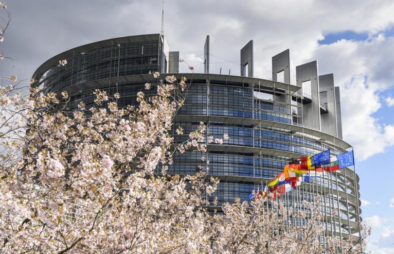 снимка 8 Европейските избори си имат европейски лица