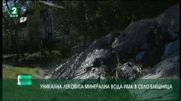 Уникална лековита минерална вода има в село Елешница