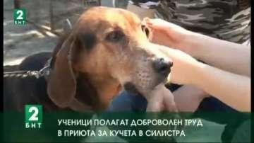 Ученици полагат доброволен труд в приюта за кучета