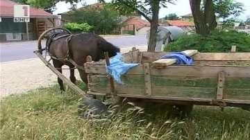 Дете загина на място след тежка катастрофа край Садово
