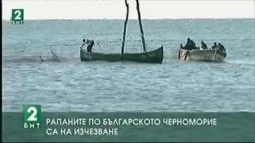 Рапаните по българското Черноморие са на изчезване