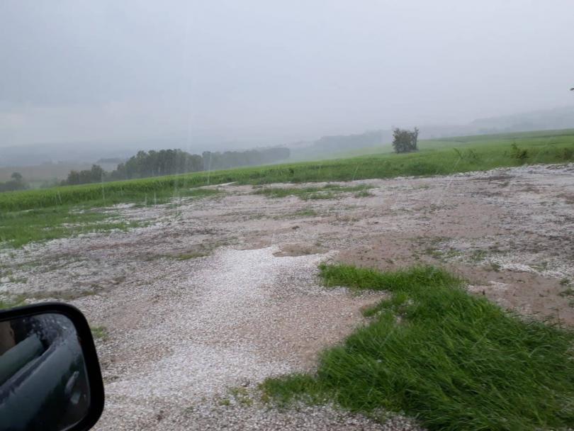 снимка 6 Градушка унищожи насаждения в района на Угърчин