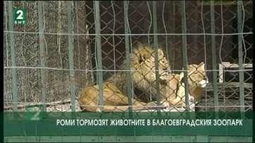 Роми тормозят животните в благоевградския зоопарк