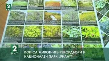 """Кои са животните рекордьори в Национален парк """"Рила"""""""
