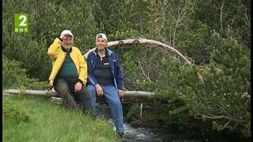 Осигуряват места за къмпинги в горите