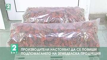 Производители настояват да се повиши подпомагането на земеделска продукция