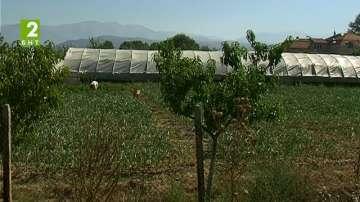 Воден режим в община Дупница
