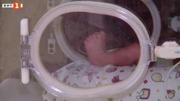 Всяка година в България се раждат около 6000 недоносени деца
