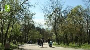 В Пловдив пръскат тревни площи срещу кърлежи