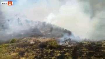 Пожарът в Рила вече обхваща около 500 декара смесени гори