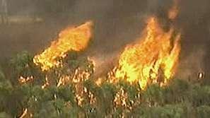 Жертви на пожарите в Австралия