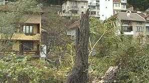 Ураганен вятър във Враца