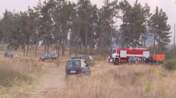 Пожарът край варненското село Каменар е потушен