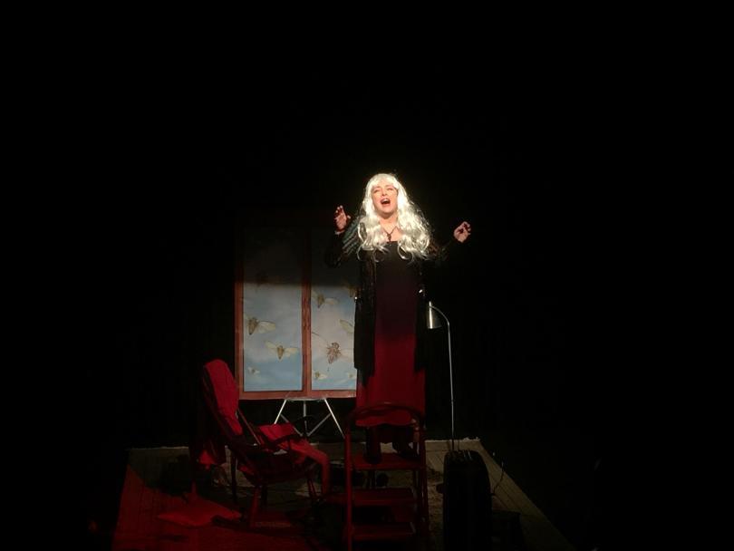 снимка 1 Отвъд границите: Мария Н. Ангелова и песента на цикадите