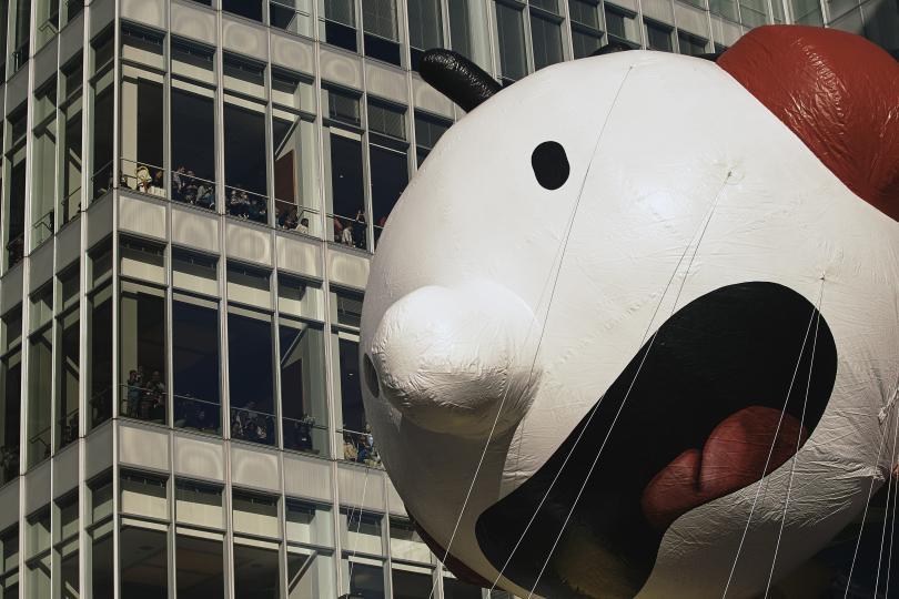 снимка 4 Рекорден студ за Деня на благодарността в Ню Йорк (СНИМКИ)