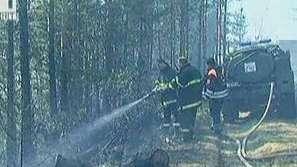 Пожарът край Банско е овладян
