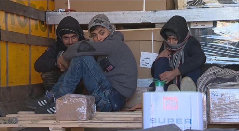 снимка 6 Най-мащабната операция на МВР и ДАНС срещу незаконната миграция