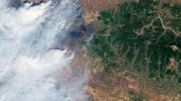 Руснаци искат с петиция искат потушаване на горските пожари в Сибир