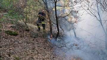 Започна проверка за готовността за борба срещу горските пожари