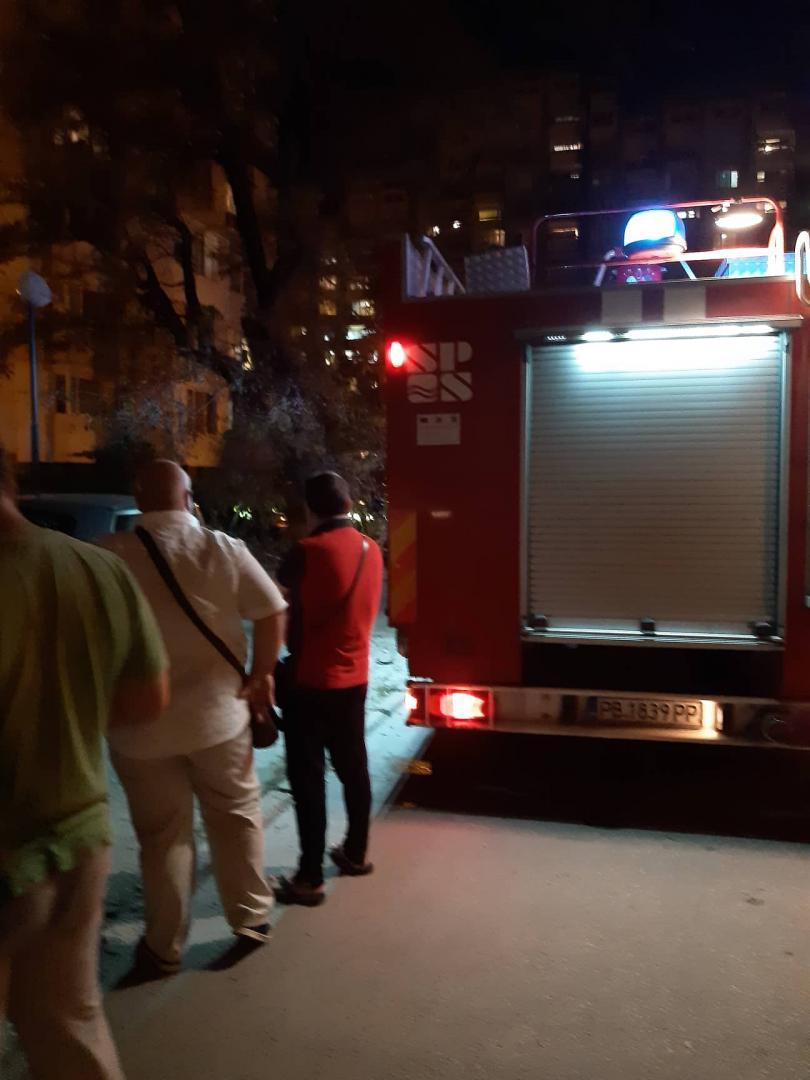 снимка 3 Дърво се стовари върху кола в Пловдив, няма пострадали (СНИМКИ)