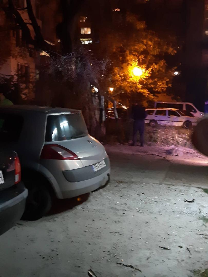 снимка 10 Дърво се стовари върху кола в Пловдив, няма пострадали (СНИМКИ)