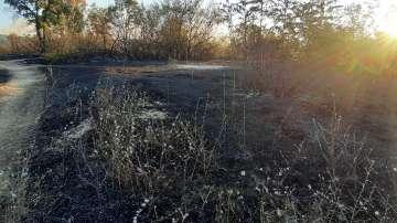 Армията се включи в гасенето на пожара в Хасковско