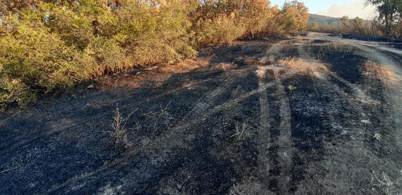 Все още не е изгасен пожарът, който избухна вчера между