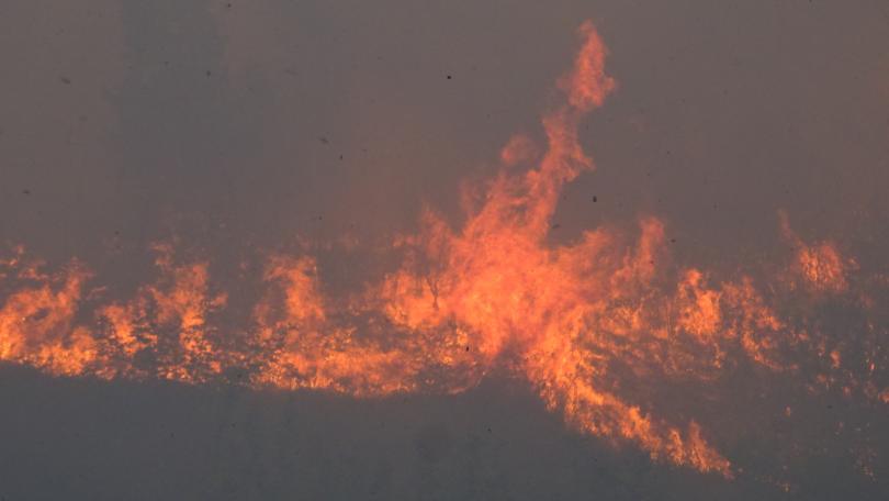 снимка 1 Пътната агенция поиска разследване за пожара на магистрала Струма