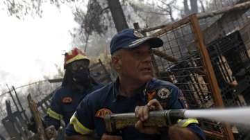 Пожарът на остров Евбея причини екологична катастрофа (Снимки)
