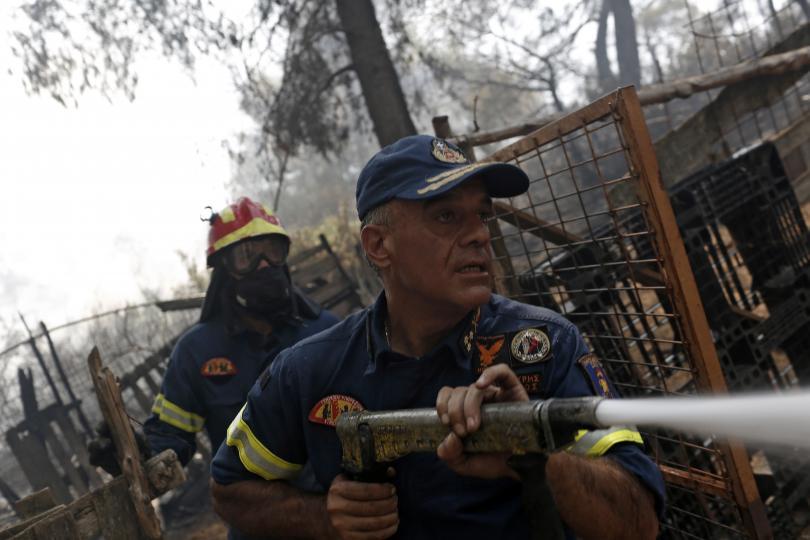 Пожарът на гръцкия остров Евбея причини екологична катастрофа. Изгоряха до